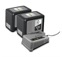 Battery Power+ Pack Set 2x36V6Ah und Charger